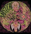 Witch album art_420x470